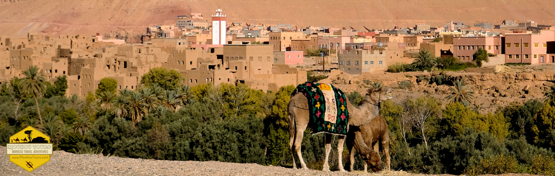 4 Days Desert tour from Marrakech to Fes