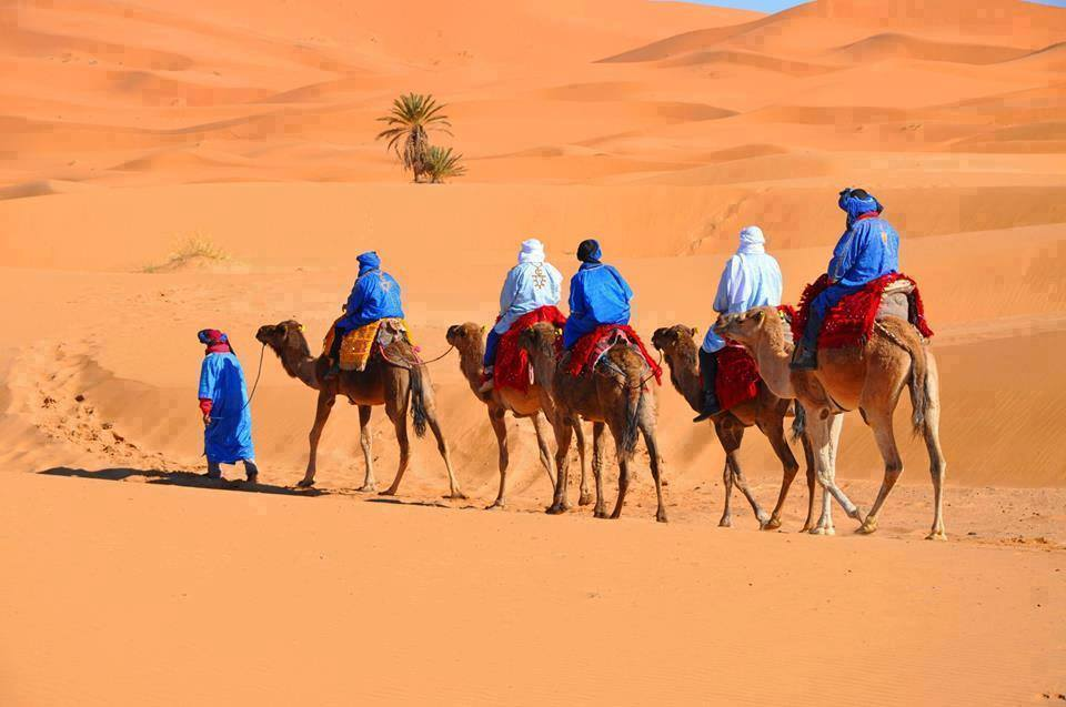 Morocco Camel Ride tours